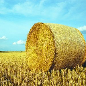 Haymaking & Forage Equipment
